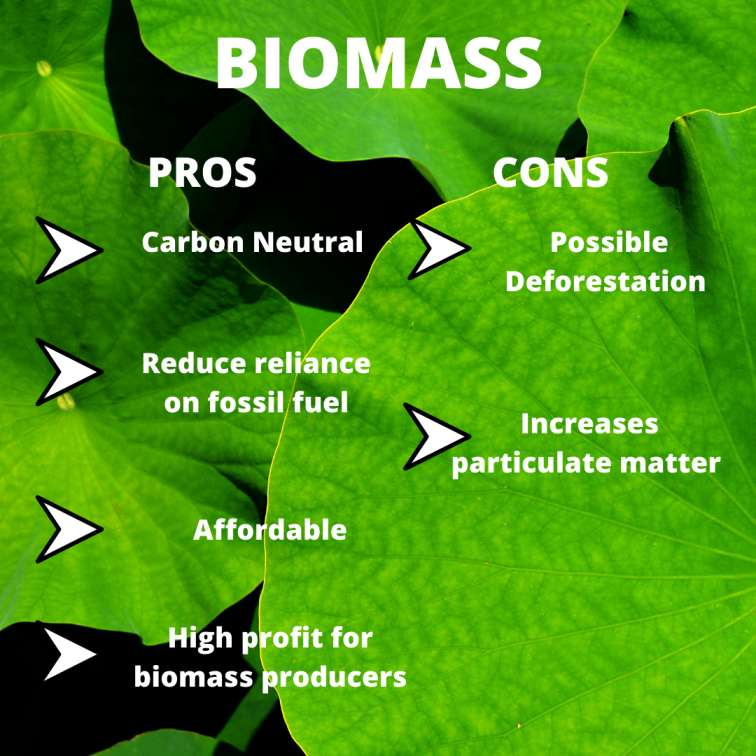 Negative Impacts of Biomass Energy on Environment