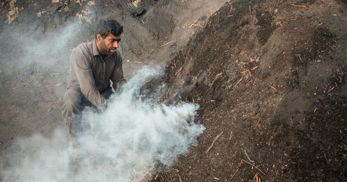 soil pollution facts bleedgreen