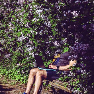 park, rest, office